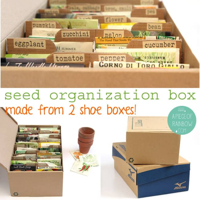 Make A Seed Box for organized storage
