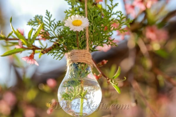 Repurposed lightbulb with daisies