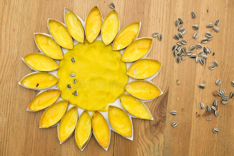 Sunflower DIY crafts. DIY home made Sunflower blossom with natural sunflower seeds. an eco-friendly game made of flour and toilet paper cores. reuse that what stock photos