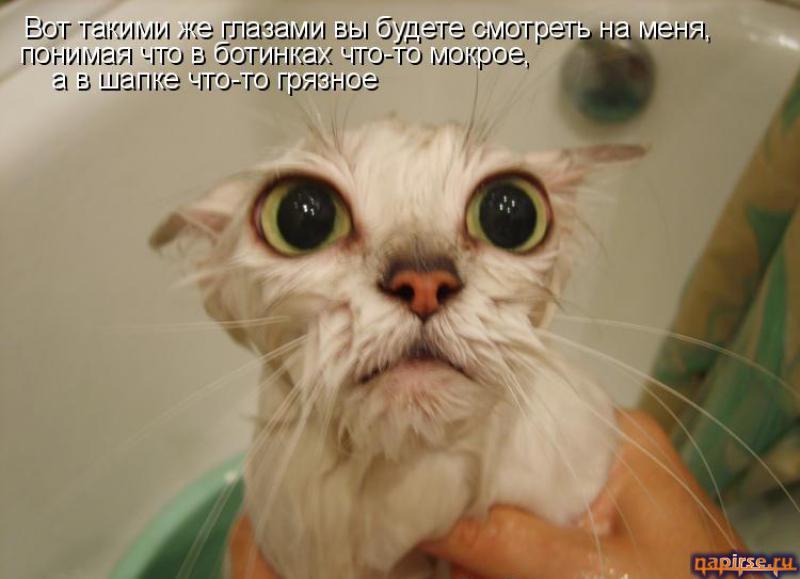 http://napirse.ru/pic/2512279610093461.jpg